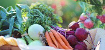 Korb mit Gemüse.