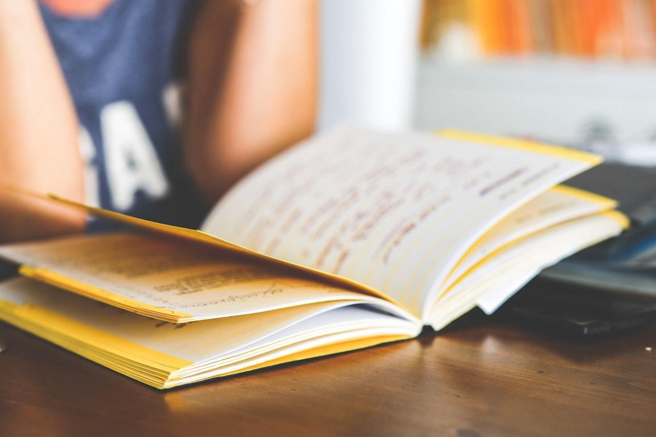 Junge Frau hat vor sich ein Buch aufgeschlagen.